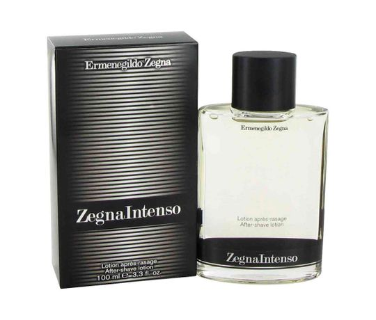 ZEGNA-INTENSO